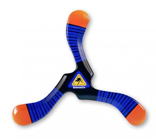boomerang ZEBRA III